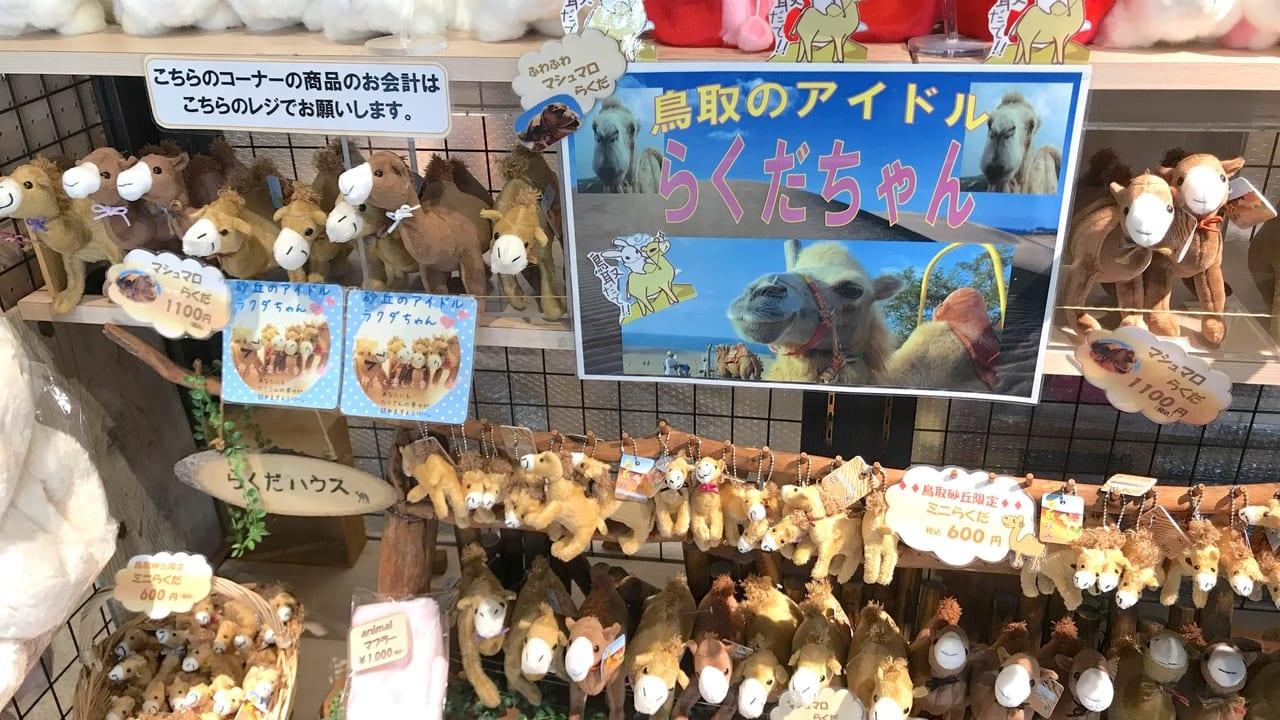 鳥取砂丘のお土産